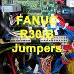 Fanuc R30iB Jumper